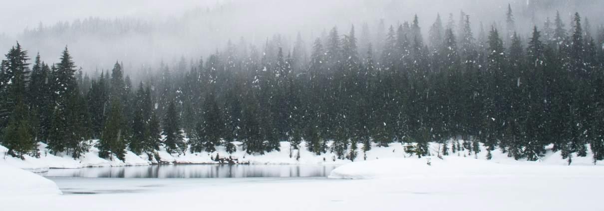 Foto einer Winterlandschaft